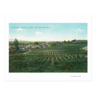 Aerial View of Town, Sonoma County from the Hill Postcard