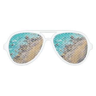Aerial View Pacific Ocean Coastline Puerto Lopez Party Sunglasses
