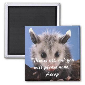 Aesop Quote & Adorable Opossum Magnet