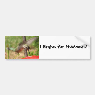 AF- Hummingbird Bumpersticker Bumper Sticker