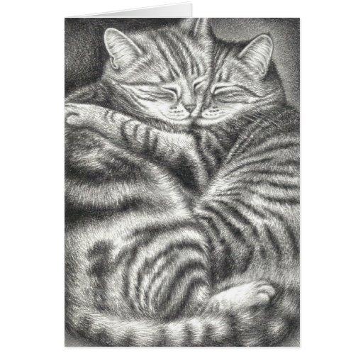 AFFECTION DE CAT TIGRÉ CARTES DE VŒUX