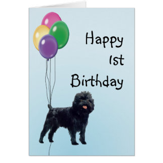 Affenpinscher Happy 1st Birthday Card