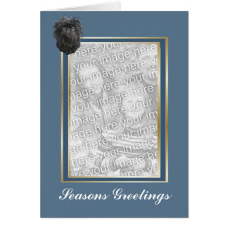 Affenpinscher Seasons Greeting Photocard Card