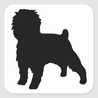 Affenpinscher silo black square sticker
