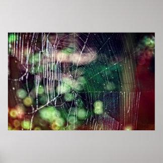 Affiche #5476 de toile d'araignée