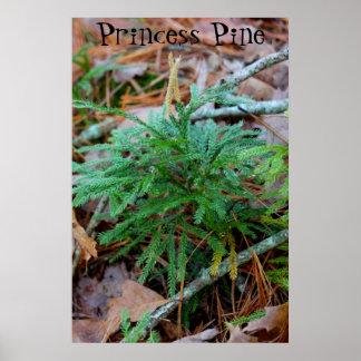 Affiche de princesse pin ou copie de toile