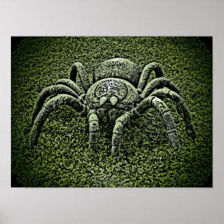 Affiche orientée d'araignée