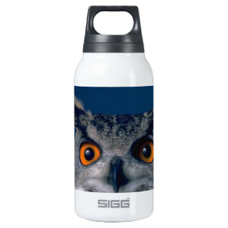 Affordable Owl Holiday