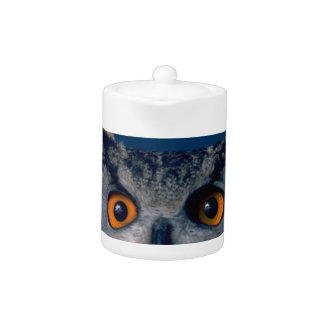 Affordable Owl Holiday Gift