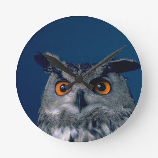Affordable Owl Holiday Gift Round Wall Clocks