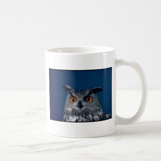 Affordable Owl Holiday Gift Coffee Mug