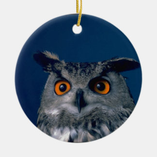Affordable Owl Holiday Gift Round Ceramic Ornament