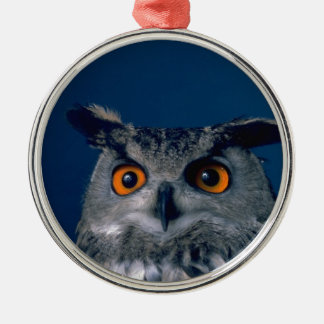 Affordable Owl Holiday Gift Silver-Colored Round Ornament