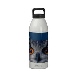 Affordable Owl Holiday Gift Reusable Water Bottle