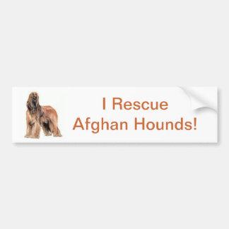 Afghan Hound Bumper Sticker