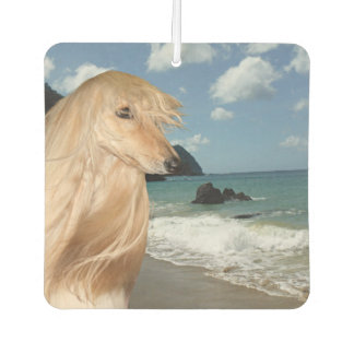 Afghan Hound dog at the beach Car Air Freshener
