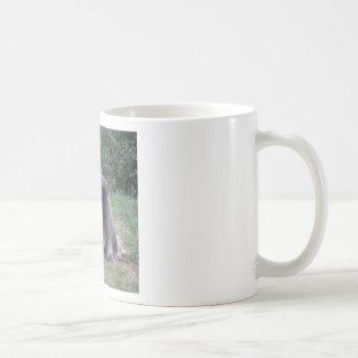 Afghan Hound Dog Coffee Mug