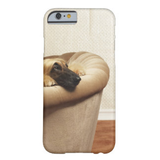 Afghan hound lying on sofa barely there iPhone 6 case