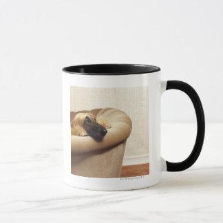 Afghan hound lying on sofa mug