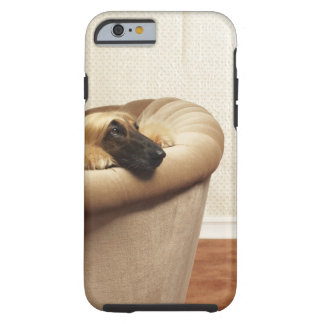 Afghan hound lying on sofa tough iPhone 6 case