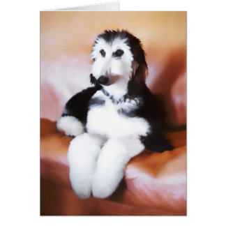 Afghan Hound Puppy Greeting Cards