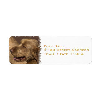 Afghan Hound Return Address Label