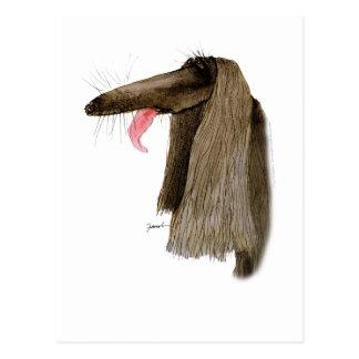 Afghan Hound, tony fernandes Postcard