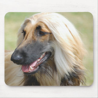 Afghan HoundPuppy Dog Mouse Pad