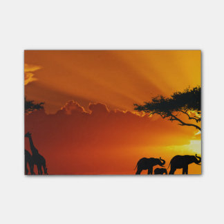 Africa 2 post-it notes