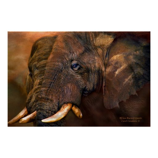 Africa-Ancient Giants Art Poster/Print Poster