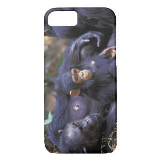Africa, East Africa, Tanzania, Gombe NP Female iPhone 7 Case