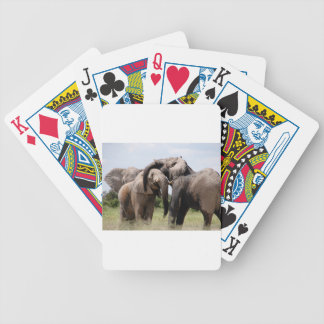 Africa Elephant Family Bicycle Playing Cards