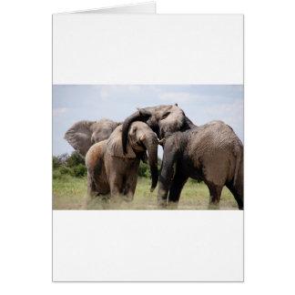 Africa Elephant Family Card