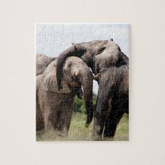 Africa Elephant Family Jigsaw Puzzle