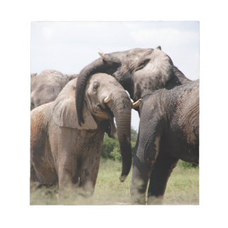 Africa Elephant Family Notepad