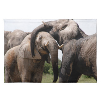 Africa Elephant Family Placemat