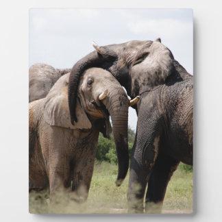 Africa Elephant Family Plaque
