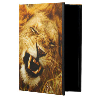 Africa, Kenya, Maasai Mara. Male lion. Wild iPad Air Cover
