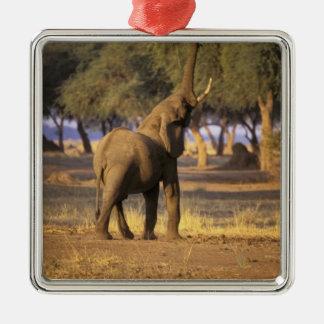 Africa, Kenya, Masai Mara. Elephant (Loxodonta Metal Ornament