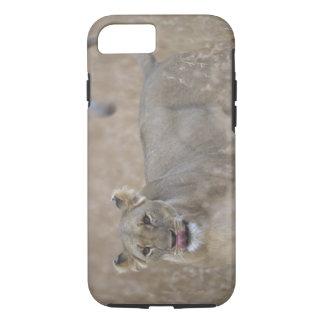 Africa, Kenya, Masai Mara Game Reserve, Adult 6 iPhone 7 Case