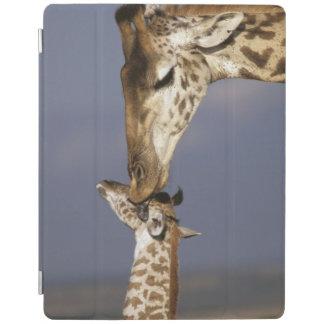 Africa, Kenya, Masai Mara. Giraffes (Giraffe iPad Cover