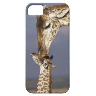 Africa, Kenya, Masai Mara. Giraffes (Giraffe iPhone 5 Case