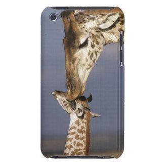 Africa, Kenya, Masai Mara. Giraffes (Giraffe iPod Touch Case