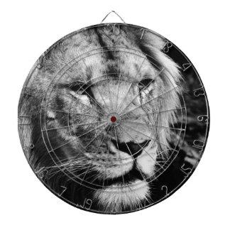 africa lion male closeup macro dartboard
