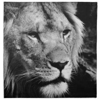 africa lion male closeup macro napkin
