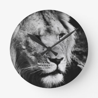 africa lion male closeup macro round clock