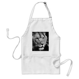 africa lion male closeup macro standard apron