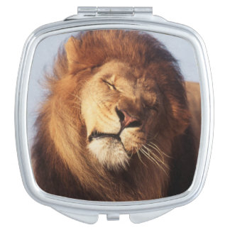 Africa, Male African Lion (Panthera Leo) Vanity Mirror