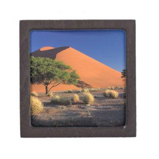 Africa, Namibia, Namib-Naukluff Park, Sossosvlei Premium Jewelry Boxes