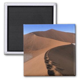 Africa, Namibia, Namib Naukluft National Park, 2 Magnet